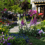 Why your lawn and landscape need spring yard clean up