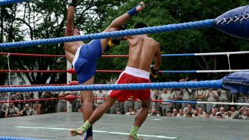 muay thai demonstration